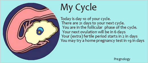 Ovulation ticker