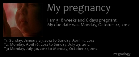 Pregnancy ticker