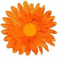 Loss Repeated-miscarriages