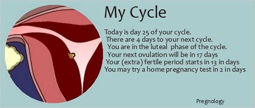 TTC Early Symptoms Before BFP/BFN - BabyCenter