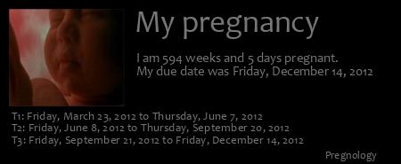 Pregnancy ticker